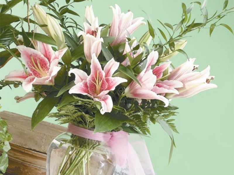 Vase of Stargazer Lillies